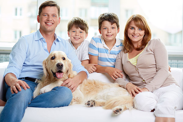 Benefits Of Choosing A Family Dentist In Bellflower Close To Home